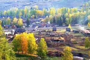 新疆阿勒泰布尔津县白哈巴国家森林公园