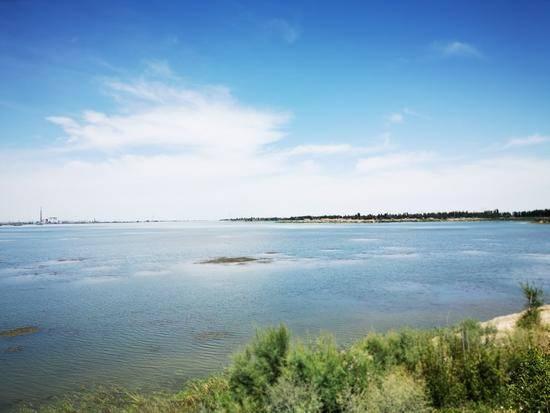 父亲节带爸爸游玛纳斯湿地公园,图六