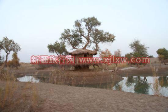 金秋十月南疆之旅(一),图六