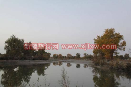 金秋十月南疆之旅(一),图三
