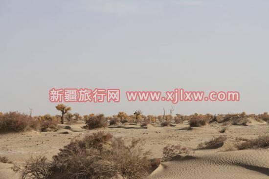 南疆环线考察之旅9,图五