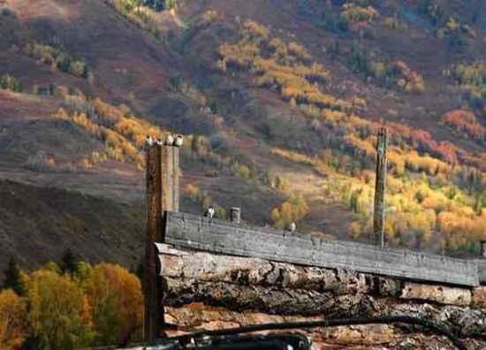 北疆梦幻般的境地,图十七