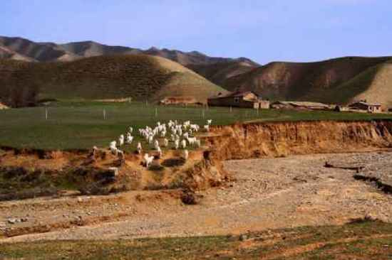 新疆自驾游,图一