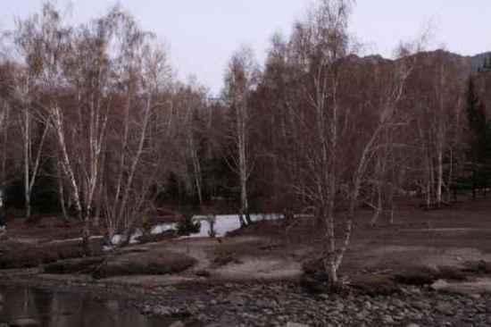 新疆自驾之旅四,图十八