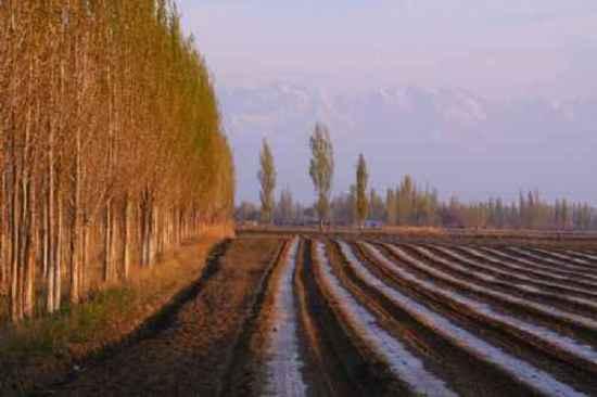新疆自驾之旅,图一
