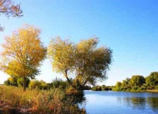 新疆边界上的美丽风光,图一