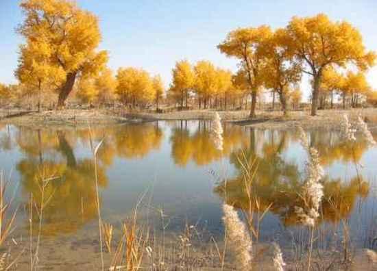 新疆边界上的美丽风光,图二