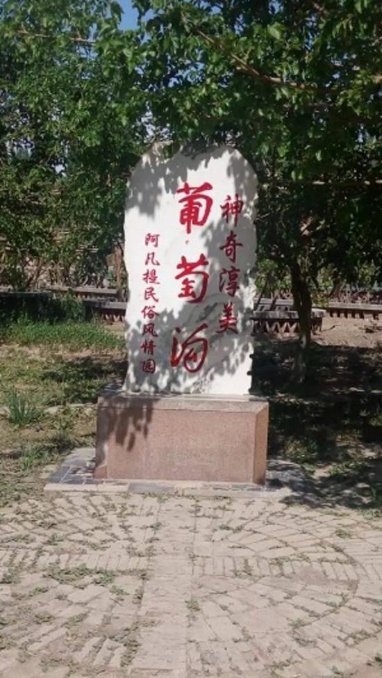 火州吐鲁番之行,图四