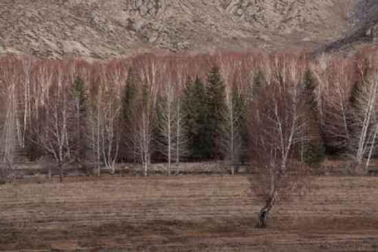 新疆自驾之旅四,图二十二