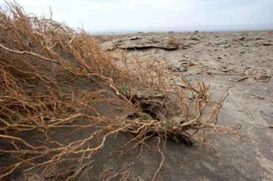 消失的中国最低地-艾丁湖,图十七
