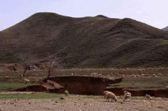 新疆自驾游,图八