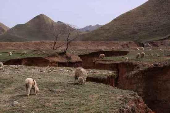 新疆自驾游,图九
