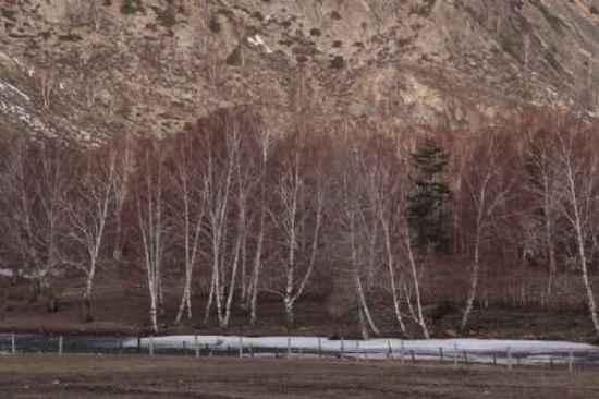 新疆自驾之旅四,图十七