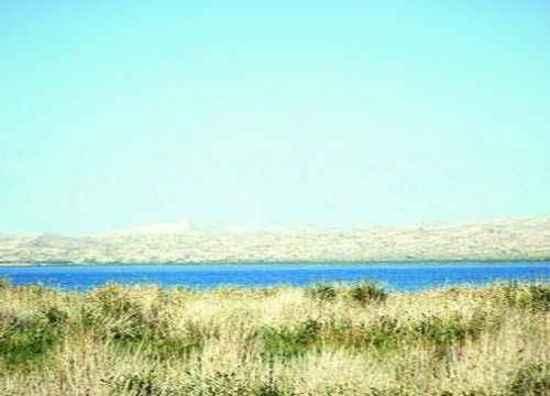 """穿越塔克拉玛干 """"死亡之海""""中感受生命,图十一"""