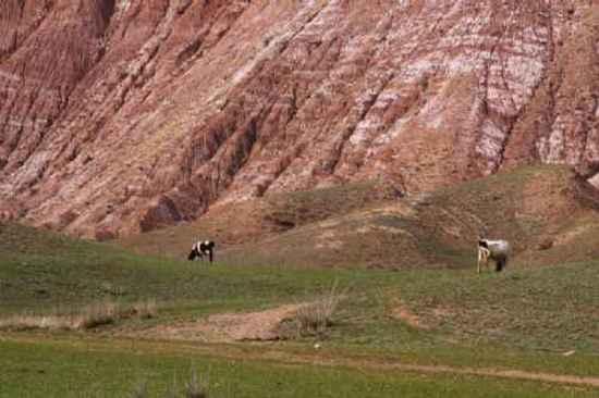 新疆自驾游,图二十八