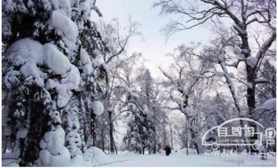 自驾游中国雪乡的超实用自驾游攻略,图四
