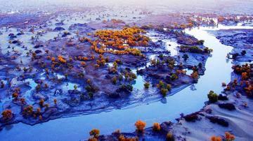 新疆阿克苏塔里木河,图四