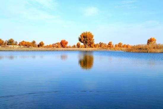 新疆阿克苏塔里木河,图三