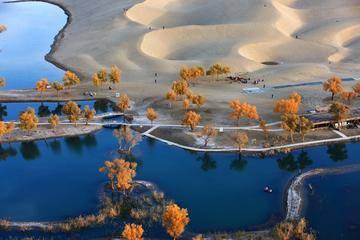 新疆阿克苏塔里木河,图一