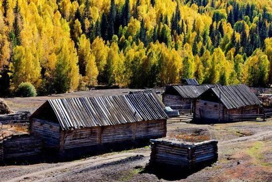 新疆阿勒泰图瓦人部落,图三