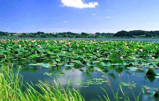 新疆库尔勒巴州莲花湖风景旅游区,图一