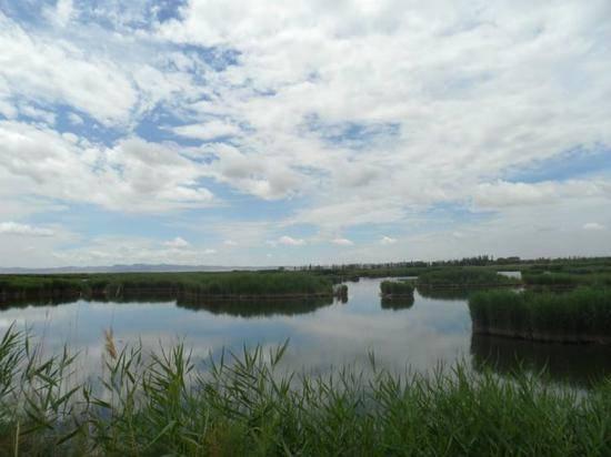 新疆库尔勒巴州相思湖旅游度假区,图二