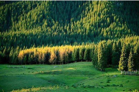 新疆石河子南山风景区,图一