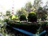 新疆乌鲁木齐市植物园