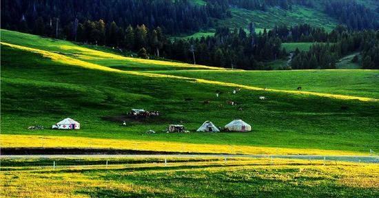新疆伊犁那拉提草原,圖一