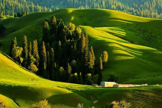 新疆伊犁那拉提旅游风景区,图二