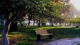 秋季宁静五彩的植物园