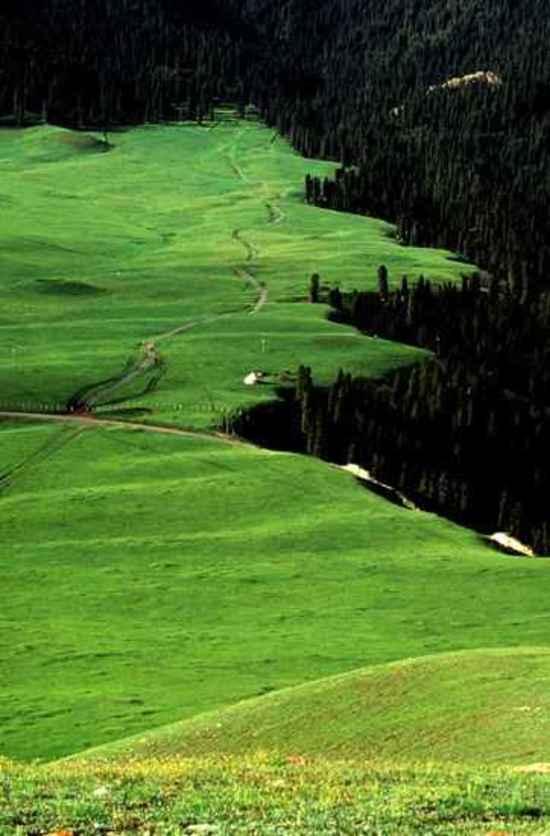 新疆鹿角湾风景,图五