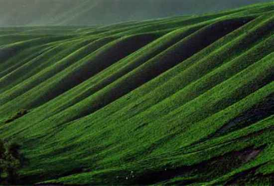 新疆鹿角湾风景,图一