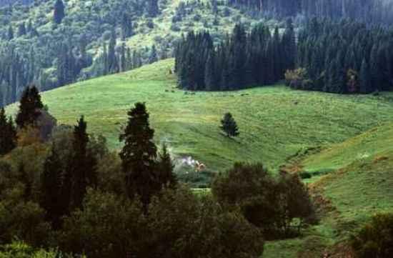 新疆鹿角湾风景,图四