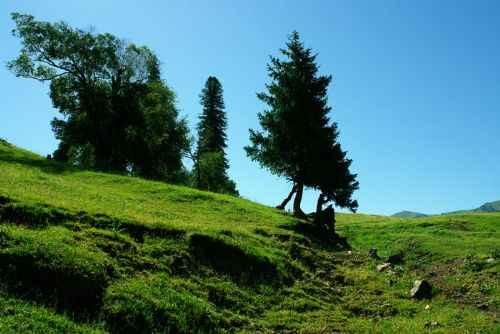 新疆---伊犁那拉提大草原
