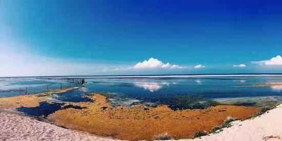 青海湖,图四