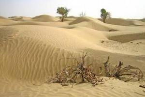 中国最大的沙漠