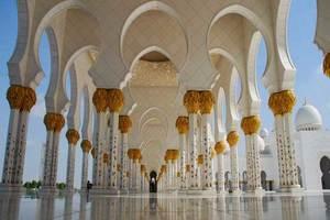 新疆到迪拜直飛6天豪華行程(CZ)