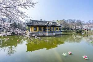 南京、无锡、苏州 、上海 、杭州 单飞单卧8日游