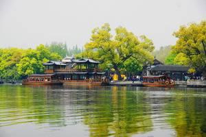 夏令营研学游:厦门 、南京、苏州、杭州、上海单飞14日