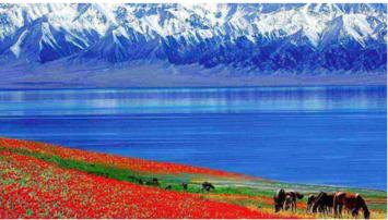 五彩滩-禾木-喀纳斯-赛里木湖-那拉提双草原-独库公路北疆7日游