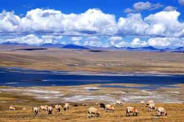 喀什市内、达瓦昆沙漠二日游