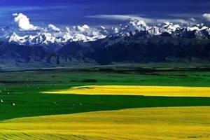 天山天池、吐魯番、伊犁那拉提草原雙臥六日游
