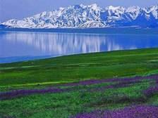 伊犁·赛里木湖、那拉提、巴音布鲁克汽车四日游