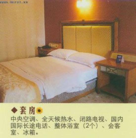 重庆银山宾馆,图四