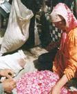 玫瑰花与维吾尔民间生活