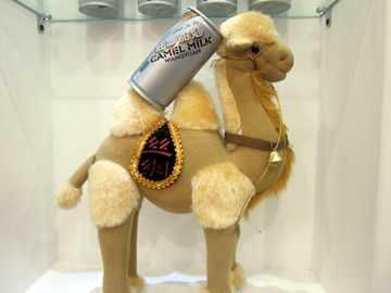 新疆駱駝奶